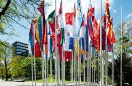 Pasaulis laukia viešojo administravimo specialistų